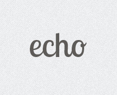 Echo WordPress Theme