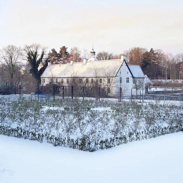 everything looks better when it has snowed winterwonderland